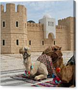 Camels Tunis Canvas Print