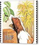 Cameroon Stamp Canvas Print