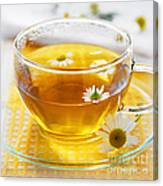 Chamomile Tea Canvas Print