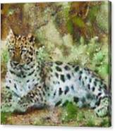 Camouflage Cat Canvas Print