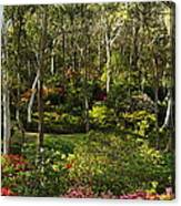 Campbell Rhododendron Gardens 2am 6831-6832 Panorama Canvas Print