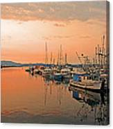Campbell River Marina Canvas Print