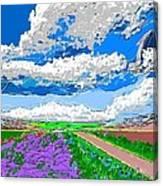 Campo En Primavera Canvas Print