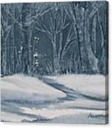 Canadian Backyard Canvas Print