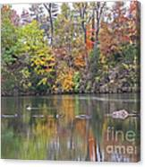 Canadian Goose Swimming Through The Autumn Reflections On The Pond Canvas Print