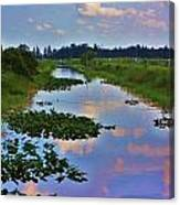 Canal In The Glades Canvas Print