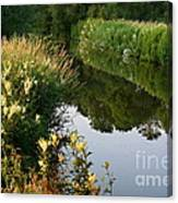 Canal Reflections Canvas Print