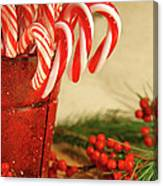 Candycanes With Berries And Pine Canvas Print