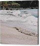 Cane Bay, Tortola # 3 Canvas Print