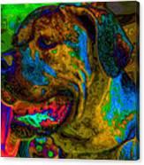 Cane Corso Pop Art Canvas Print