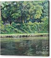 Cane River Canvas Print