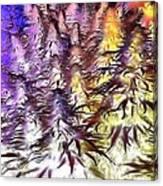Canna Dusk 4 Canvas Print