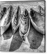 Canoes In Black And White Canvas Print
