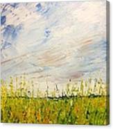 Canola Field In Abstract Canvas Print