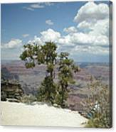 Canyon And Sky Canvas Print