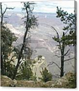 Canyon And Trees Canvas Print
