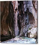 Canyon Color Canvas Print