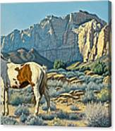 Canyon Country Paints Canvas Print