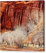 Canyon De Chelly - Spring II Canvas Print