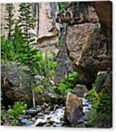 Canyon Serenity - Crazy Woman Creek - Crazy Woman Canyon - Johnson County - Wyoming Canvas Print