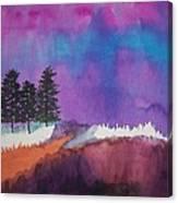Canyon Shadows Canvas Print
