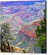 Canyon View From Walhalla Overlook On North Rim Of Grand Canyon-arizona  Canvas Print