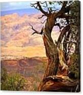 Canyon Vista 1 Canvas Print