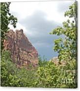 Canyon Wall Through The Trees Canvas Print