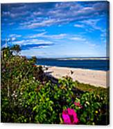Cape Cod Beach Canvas Print