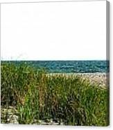 Cape Cod Dunes Canvas Print