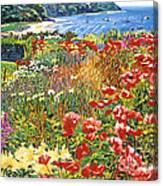 Cape Cod Ocean Garden Canvas Print