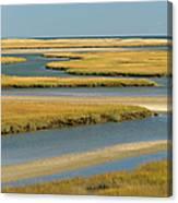 Cape Cod Wetlands Canvas Print