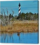 Cape Hatteras Lighthouse Deer In Pond 1 3/01 Canvas Print