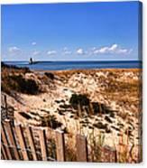 Cape Henlopen Overlook Canvas Print