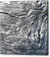 Cape Meares Driftwood Grain 001 Canvas Print