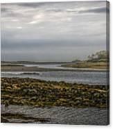 Cape Porpoise Maine - Fog On The Horizon Canvas Print