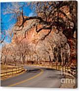 Capitol Reef Scenic Drive Canvas Print