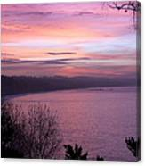 Capitola Bluffs Canvas Print