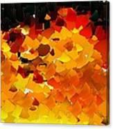 Capixart Abstract 108 Canvas Print