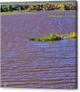 Caprock Canyon-lake Scenic Canvas Print