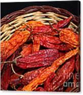 Capsicum Baccatum Chilis Canvas Print