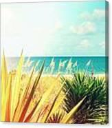 Captiva Island Photography Light Leaks Canvas Print