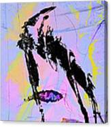 Capture Ratio Canvas Print