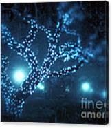 Captured Stars Canvas Print