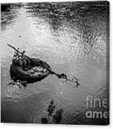 Carcass In The River Canvas Print