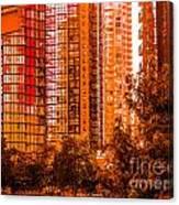 Cardero-71-jpg Canvas Print
