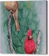 Cardinal Companions Canvas Print