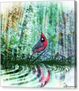 Cardinal - Featured In Comfortable Art-wildlife-and Nature Wildlife Groups Canvas Print
