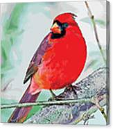Cardinal In Ice Tree Canvas Print
