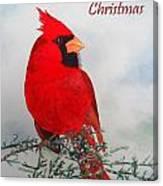 Cardinal Merry Christmas Canvas Print